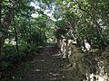 Vlachovo Březí, židovský hřbitov, cesta 02.jpg