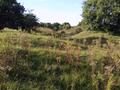 Vlakte van Waalsdorp (Waalsdorpervlakte) 2016-08-10 img. 539.png