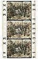Voyage au centre de la terre (1910) Fragment 13.jpg
