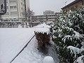 Wädenswil gulmenmatt - panoramio.jpg