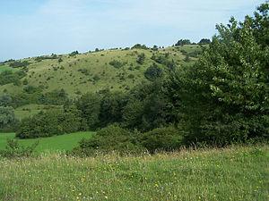 Blick von Süden auf die Alte Warth