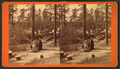 Washing camp, by J. A. Palmer 3.png