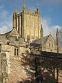 Wells Cathedral tower - geograph.org.uk - 1671726.jpg