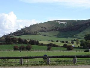 Westbury White Horse - Seen from Heywood