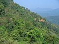 Western Ghats Vegetation - View en route Kottiyoor to Mananthavady5.jpg