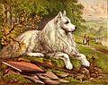 White Dog (1).jpg