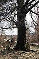 Wiki Šumadija III Spomenik knezu Stanoju 264.jpg
