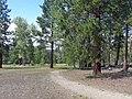 Wildlife Viewing Area Trail2, Lee Metcalf Refuge (7638336678).jpg