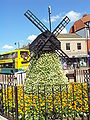 Windmill flower display, Lytham - DSC07161.JPG