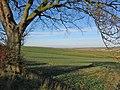 Wolds Farmland - geograph.org.uk - 325168.jpg