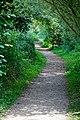 Woods Mill, Sussex Wildlife Trust, England - gravel footpath.jpg