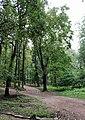 Yakimanka District, Moscow, Russia - panoramio (217).jpg