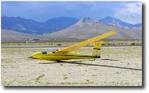 Schweizer SGS 1-35 - Image: Yellow Bird by Alex Zobel