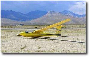 Schweizer SGS 1-35 - Image: Yellow Bird by Alex Zobel
