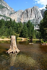 YosemitePark5 amk.jpg