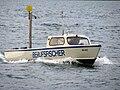Zürichsee - IMG 3100.jpg