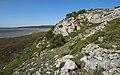 Île Saint-Martin, Gruissan cf18.jpg
