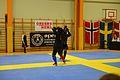 Örebro Open 2015 115.jpg