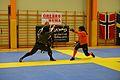 Örebro Open 2015 95.jpg
