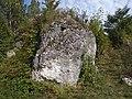 Łutowiec, rock (2) DK18.jpg