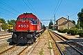 Στο σιδηροδρομικό σταθμό της Τιθορέας - panoramio.jpg