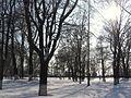 Без названия - panoramio (5).jpg