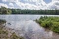 Быковщинское озеро.jpg