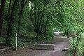 Голосіївський національний природний парк IMG 7628.jpg