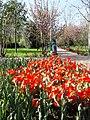 Парк им. А. Рудаки. г. Душанбе (1).jpg