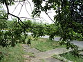 Парк шума Гази Баба во мај (117).JPG