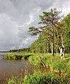Пено. Орлинка. 2014 - panoramio (9).jpg