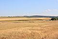 Поля - panoramio (5).jpg