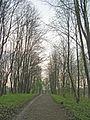 Приоратский парк. Гатчина 04.jpg