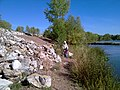 Река Белая, возле водозабора салаватнефтеоргсинтеза - panoramio (5).jpg