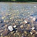 Река Хамней вблизи.jpg