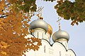 Смоленский собор, купола-1.jpg