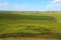 Урочище Синие Камни. Вид в северо-восточном направлении - panoramio.jpg