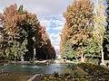 باغ شازده ماهان (2).jpg