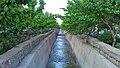 مسیل جاجرود از نمایی زیبا - panoramio.jpg