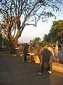 ช้าง - panoramio.jpg