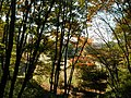 ワンちゃんと散歩 - panoramio.jpg