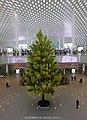 塑料树 plastics tree - panoramio.jpg