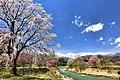 大出の吊橋 - panoramio (3).jpg