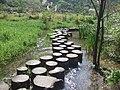 荔波-小七孔景区的树墩路 - panoramio.jpg