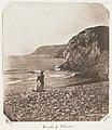 -Emma Charlotte Dillwyn Llewelyn's Album- MET DP143474.jpg
