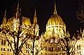 03 2019 photo Paolo Villa - F0197916 (Original)- Budapest - Parlamento - notte - luci - alberi - cupola - Neomedievalismo Neogotico.jpg