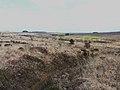 064 Le bassin amont de l'Elorn.JPG