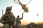 101st Airborne Participate in an Air Assault Mission DVIDS101373.jpg