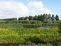 1396 Baambrugge, Netherlands - panoramio (6).jpg
