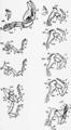 1911 Britannica-Arachnida-Limulus polyphemus6.png